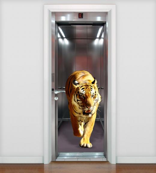 Foto destaque - Adesivo para Porta Tigre no Elevador